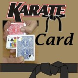 KARATE CARD - La carte karaté
