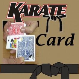 KARATE CARD - La carte karaté