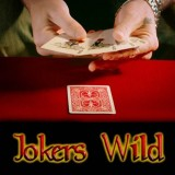 Jokers Wild by Magic Makers