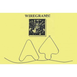 Mini-Memory Wiregram 8 de carreau