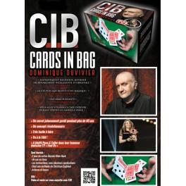 """C.I.B. """"Cards In Bag"""" de Dominique Duvivier"""